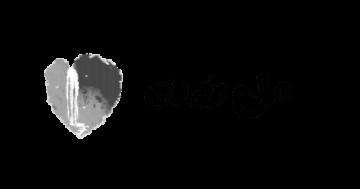 四面山旅游网logo